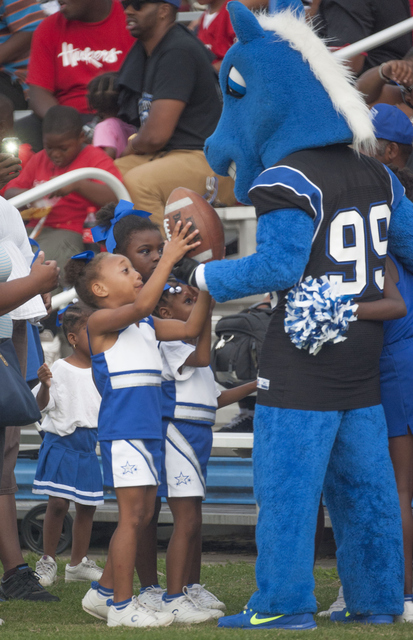 Fayetteville State Bronco mascot and fans