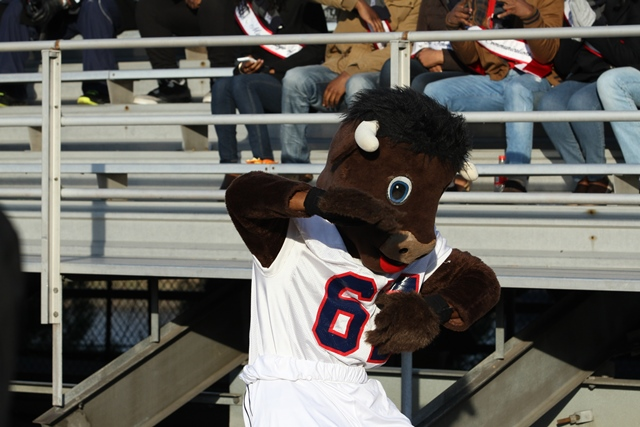 Howard Bison mascot
